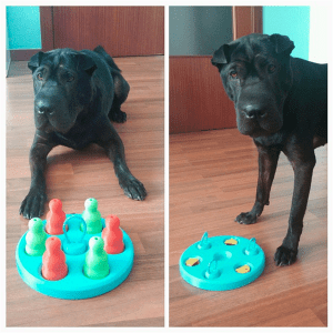 3D printable 'Dog's Game'